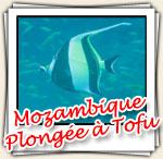 Photos de nos plongées à Tofu, Décembre 2006